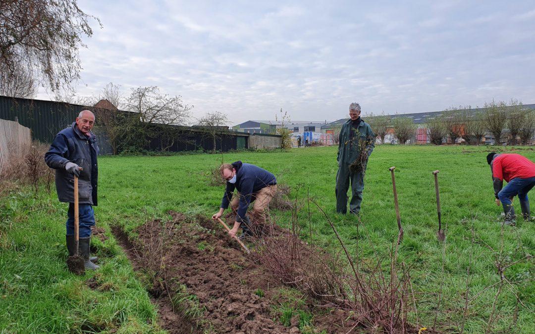 Meer Bomen Nu: een actie van stichting MEERgroen en Urgenda