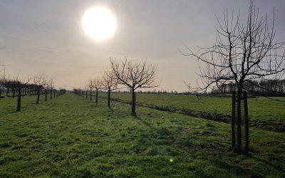 Aad den Boer – een groen, duurzaam landgoed in Nieuw-Lekkerland